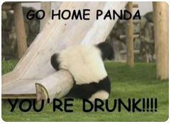 DrunkPanda.PNG.e79ee6e38a7d7c59bf2bde54201492d8.PNG