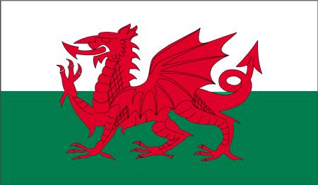 Flag_of_the_Wales.PNG.8df3217a477b962ed3d1ea13217a552b.PNG